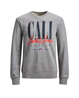 Sudadera Jack and Jones Arts Gris Hombre